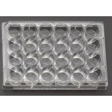 24 Well Cell Culture Dishes, Sterile , Non Pyrogenic, TC treatment, 50 Pcs / case