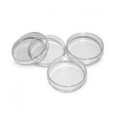 35 x 12 mm Petri Dish,  Sterilized, Non-pyrogenic, 500 Pcs/ Case